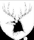 Braven Brewing logo.png