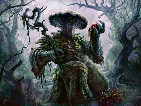 Druid: Circle of Spores