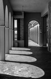 Harvey House Shadows