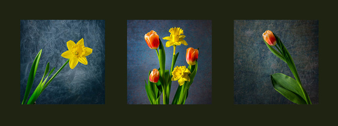 Floral Triptych.jpg