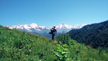 Traveller in the Caucasus, Georgia