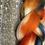 Thumbnail: Foxtail Corridale Roving-Micro and Macro