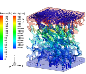 Liver microcirculation CFD model.png