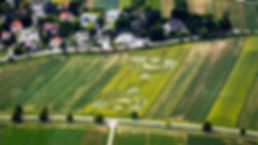le-crop-circle-de-blaesheim-vu-d-avion-c