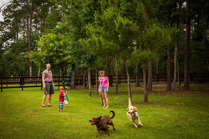 Admiral Dog Park
