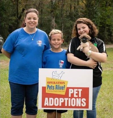 Pet Adoptions.jpg