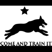 Come & Train It