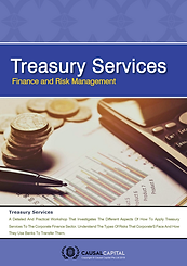 Causal Capital_Treasury Services Cover.p