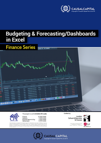 Budgeting & Forecasting/Dashboards in Excel, 2020