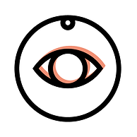 Fraud-Control-&-Surveillance.png
