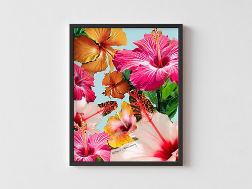 Hibiscus Collage Framed Poster