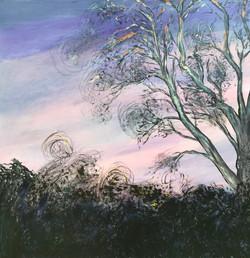 Sunset Fireflies