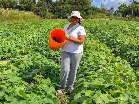Volunteer Spotlight: Nalesha Leca