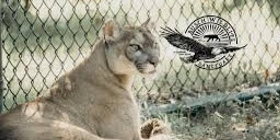 Busch Wildlife Sanctuary Administrative Assistant