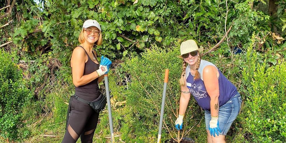 Lake Worth Tree Planting