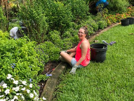 Grooming the Garden at Mounts Botanical Garden