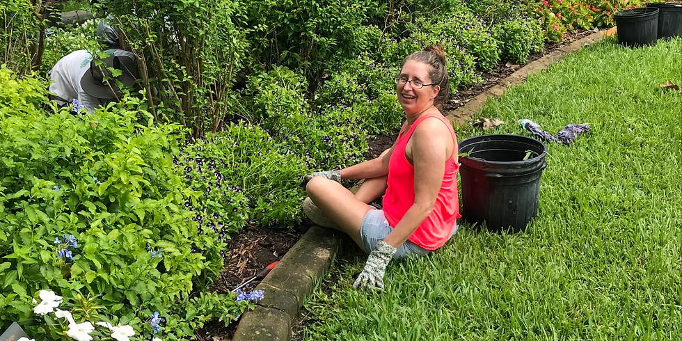 Grooming the Garden @ Mounts Botanical Garden