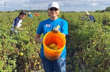 Volunteer Spotlight: Sue Gregg
