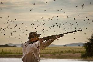 Dove Hunt Argentina.jpg