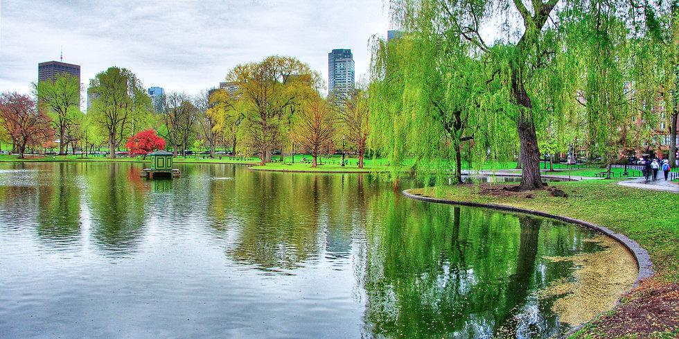 Boston Park.jpg