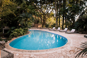 Jungle Suite Pool.jpg