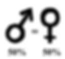 femmes=hommes.png