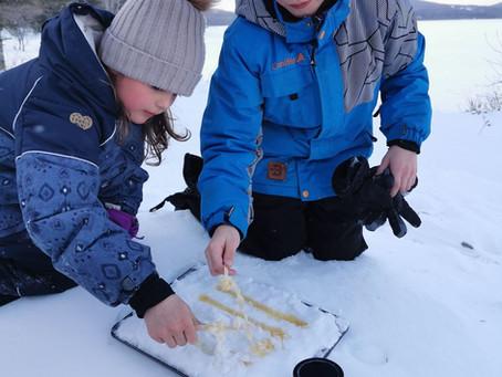 Tire de miel sur la neige