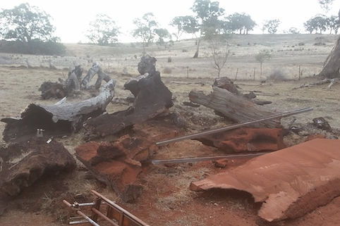 Old raw timber log left over from bush fire