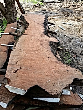 Milled timber slab