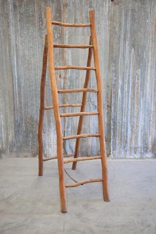 ladder5 small.jpg