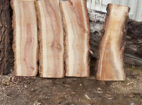 Small Ironbark slabs