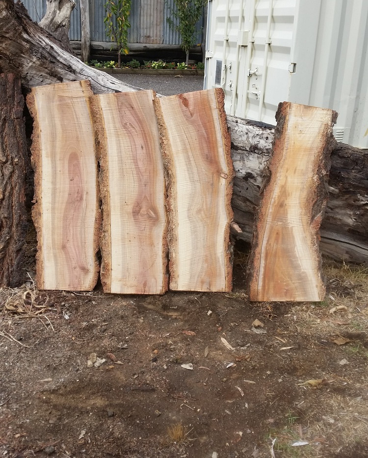 Small Ironbark slabs