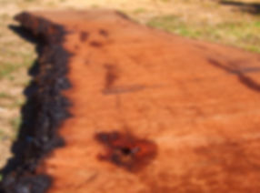 Stunning raw timber red gum slab