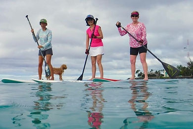 Hawaii Paddle Board