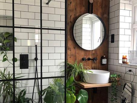 Les plantes dans la salle de bain ? On dit : OUI !
