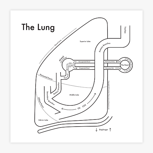 Lung Letterpress Press