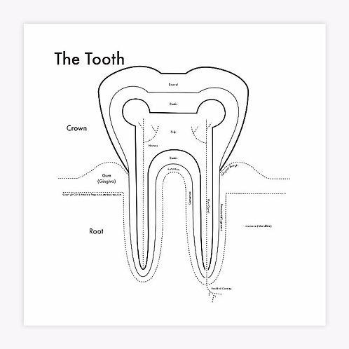 Tooth Letterpress Press