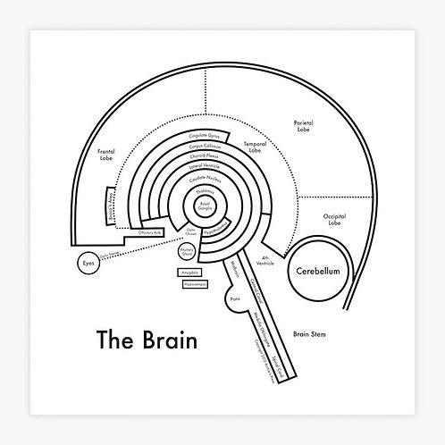 Brain Letterpress Print