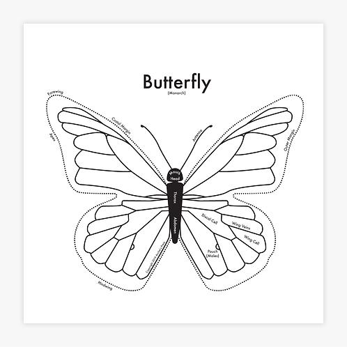 Butterfly Letterpress Print