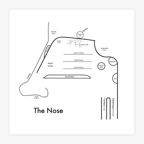 Nose Letterpress Press