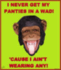art, humor, chimp, monkey, panties, whimsical, comedy, fun, Karlyle Tomms, Instagram, Twitter, Tumblr, Facebook, t-shirts, fashion, clothing, mugs, dresses, cups, phone cases, computer cases, wall art, posters, home decor, pillows, clocks, bedding