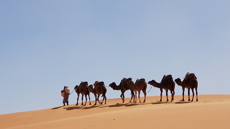 MAGICAL MOROCCO - Cancelled due to government travel guidelines