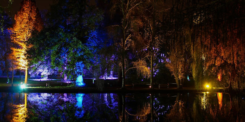 The Enchanted Woodland Adventure