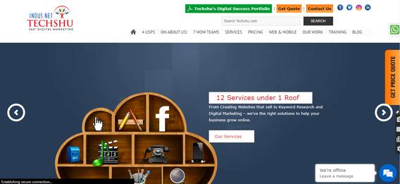 digital marketing agencies Techshu