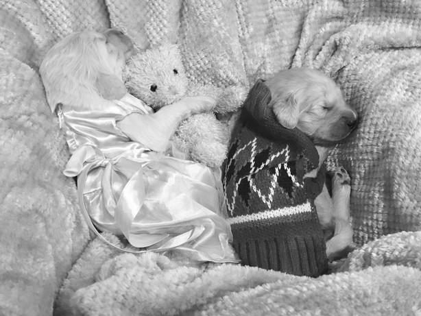 17_2 with teddy.jpg