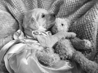 8_holding teddy_B&W.jpg