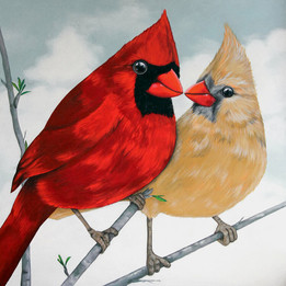 Mr. & Ms Cardinals