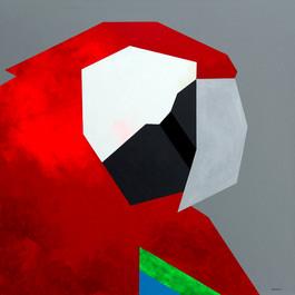Guacamaya (Macaw)