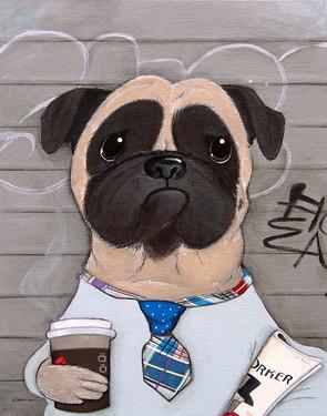 Bailey, the New Yorker Pug