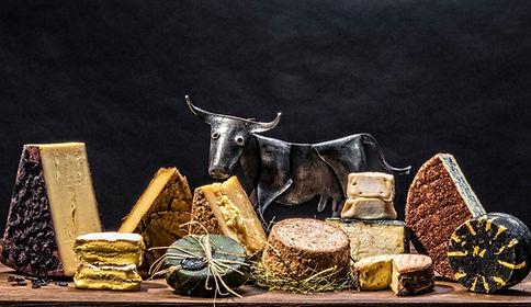 Focus Fotodesign   Foodfotografie   Essen Fotografie   Kulinarik   Südtirol